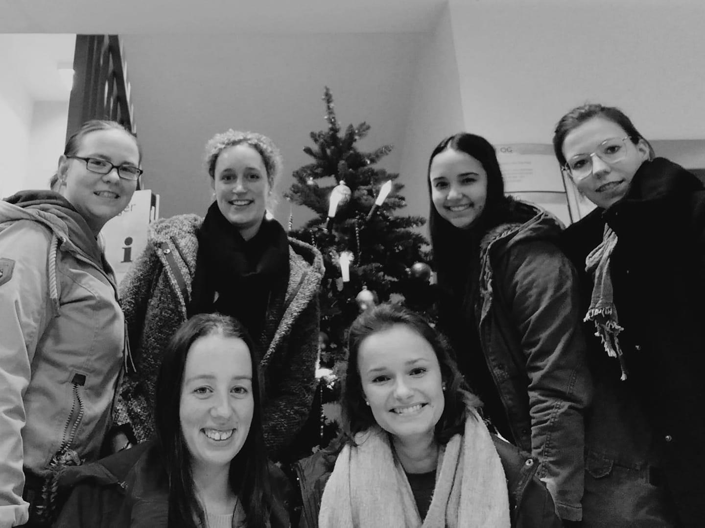 Skylarks verbreiten Weihnachtsfreude